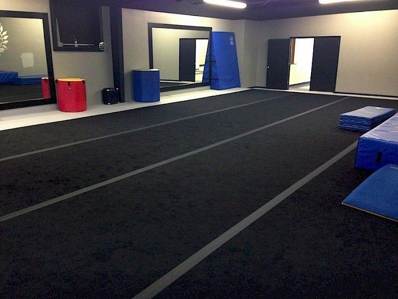 Ez Flex Carpet Perfect Surfaces