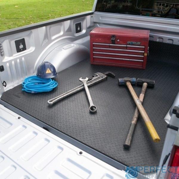 Longhorn Truck Mat 2